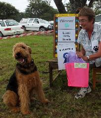 Airedale prize winner